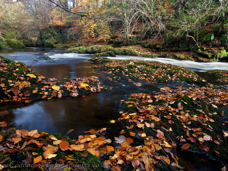 Autumn colours on the River Devon, Devon Gorge, by Rumbling Bridge, Kinross, Scotland